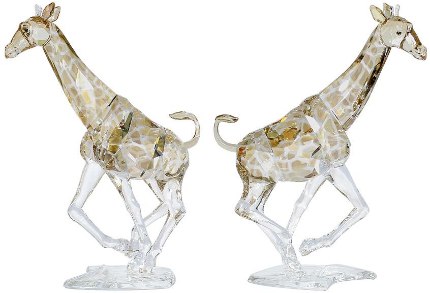 Giraffe  Heinz Tabertshofer